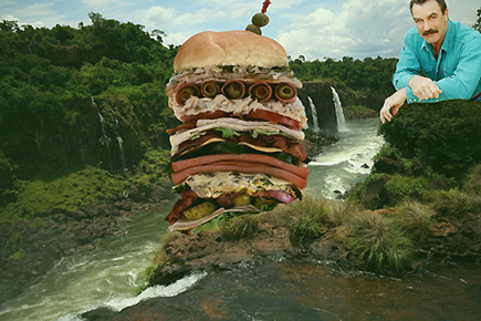 selleck-waterfall-sandwich2