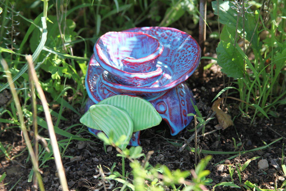 Give the toads in your garden a a special shady spot! Click on this photo to choose.