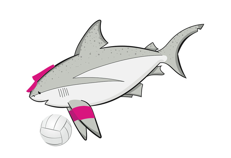 Sandbar Shark Beach Volleyball Player.