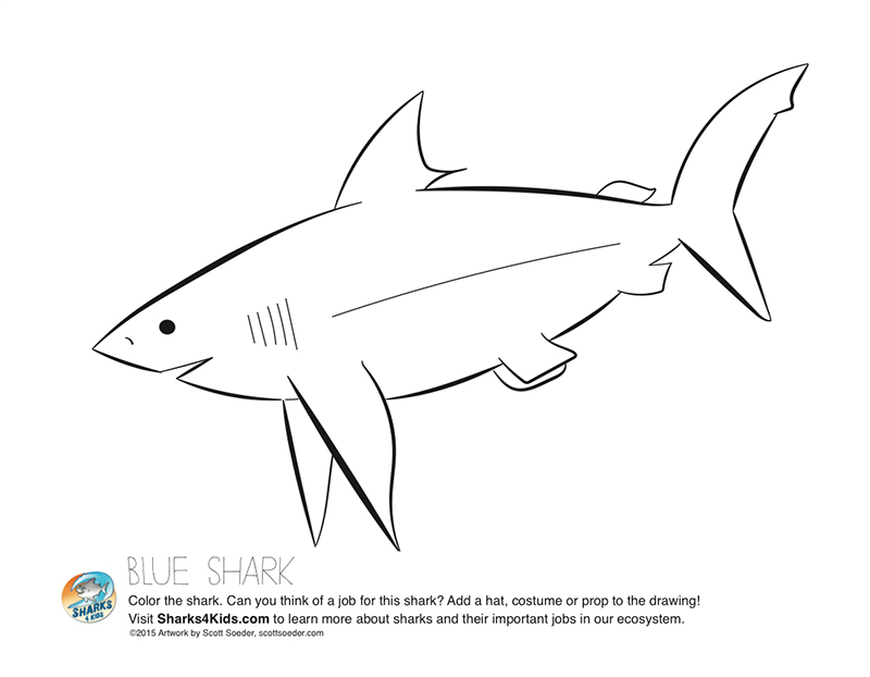 The Blue Shark from one of the coloring pages. You can download the coloring pages for free when getting a poster.