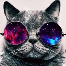 catspaceglasses.jpg