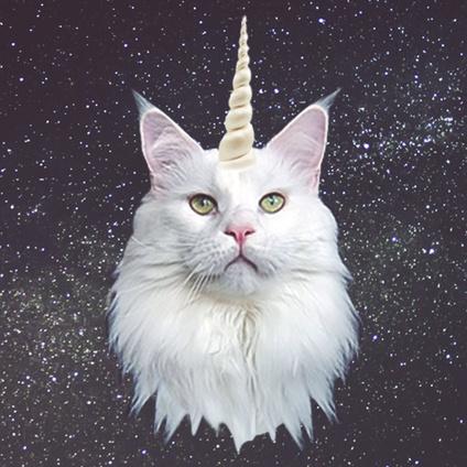 proudunicorncat.jpg