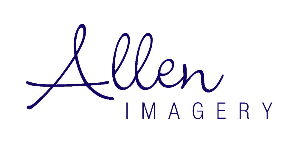 AllenImagery_logo blue.png