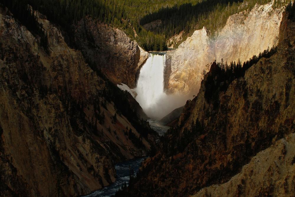 Lower Falls of Yellowstone.