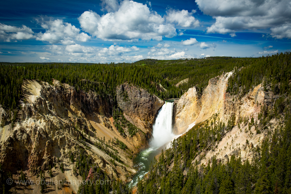 Lower Falls of Yellowstone is one of the iconic images of the Park. It is always fun to catch it on a bluebird day.