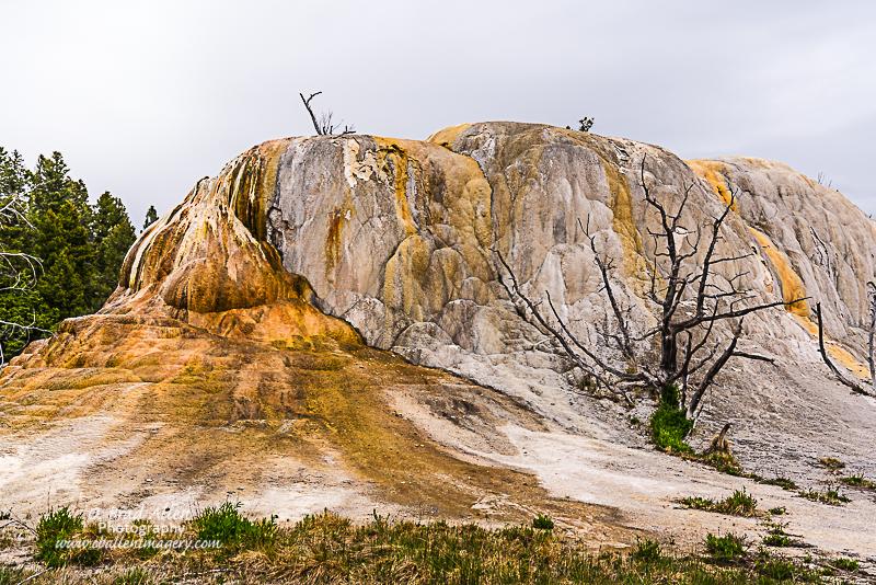 Yellowstone-35.jpg