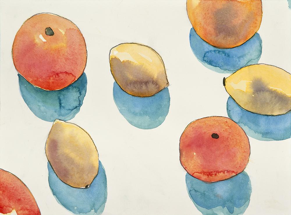 Still Life Oranges Lemons 2