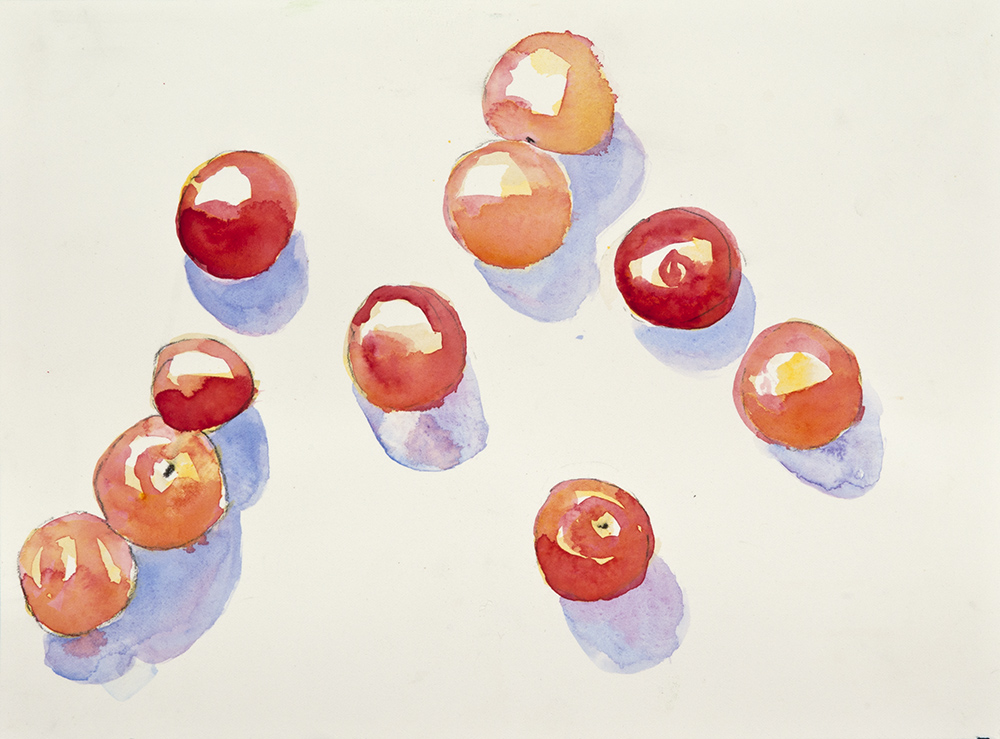 Still Life Tomatoes 4