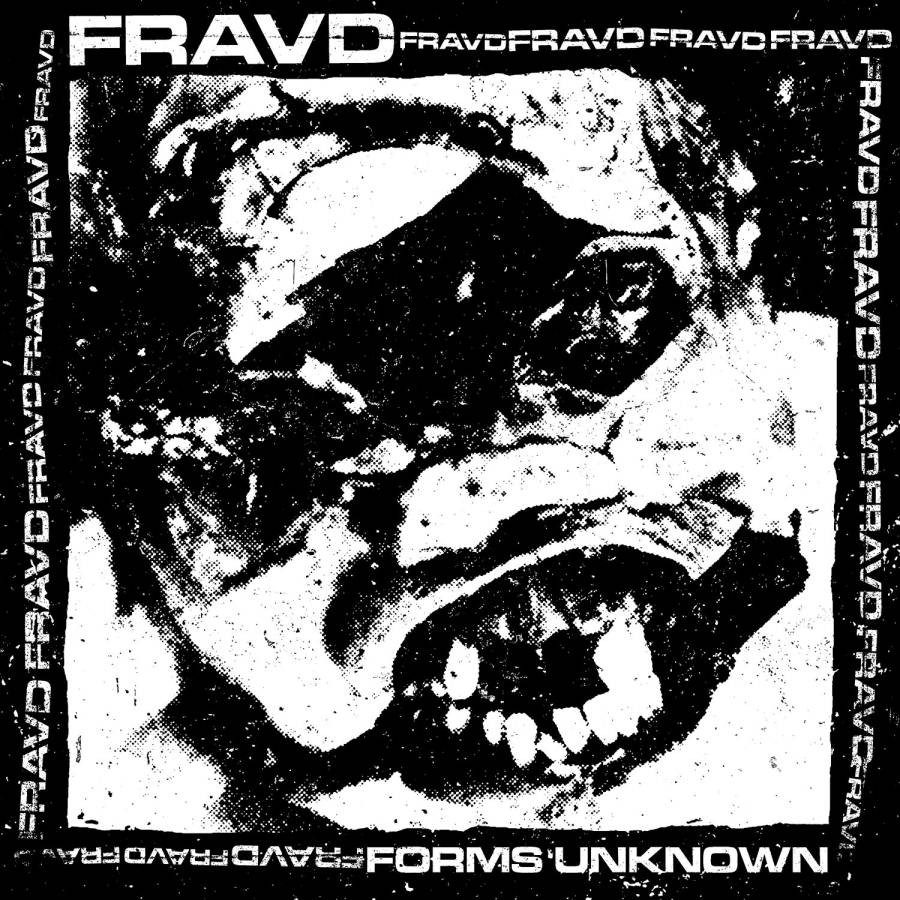 Fraud - Forms Unknown (2013)