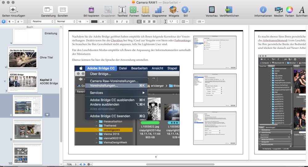 Screenshot aus dem eBook RAW Entwicklung und professioneller Workflow mit Adobe Bridge von Eric Berger