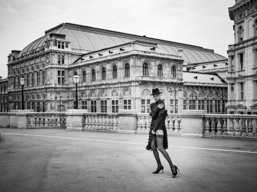 Early Morning Vienna