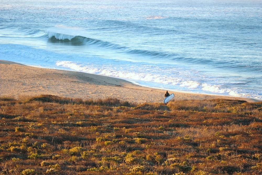photo de surf 17859