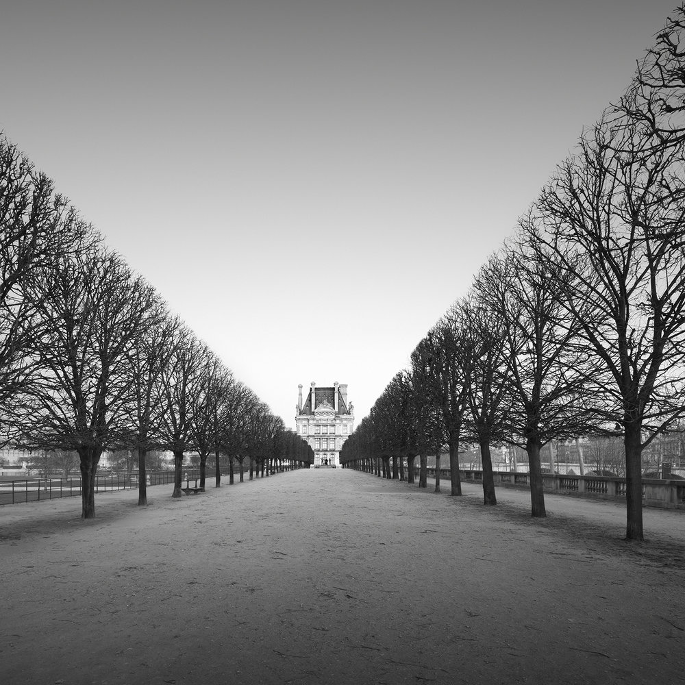 tuileries - paris, france, 2016   LIMITED EDITION OF: 50  IMAGE SIZES AND PRICES (PRINT ONLY / FRAMED):  30x30 - £145 / £225 - £255  45x45 - £195 / £290 - £335  60X60 - £275 / £465 - £560   awards   HONOURABLE MENTION - INTERNATIONAL PHOTOGRAPHY AWARDS