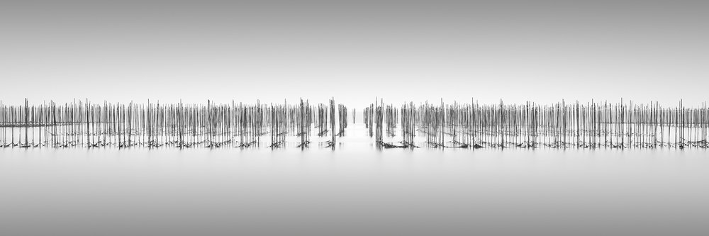 SHUKAKU - TOKONAME, JAPAN, 2017   LIMITED EDITION OF: 50  IMAGE SIZEs and prices (print only / framed):  90X30 - £275 / £445 - £535   AWARDS   HONOURABLE MENTION - INTERNATIONAL PHOTOGRAPHY AWARDS