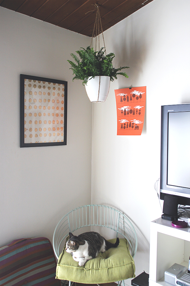 DIY-HANGINGPLANT+copy.jpg