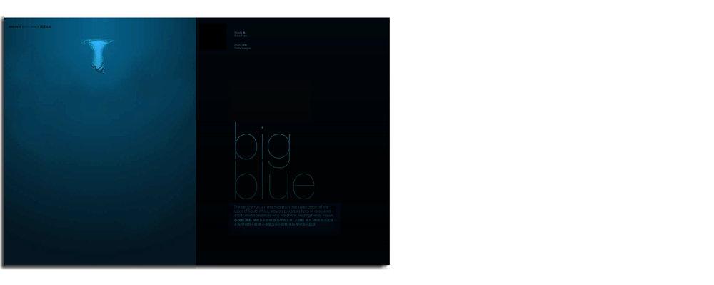 CXbig blue.jpg