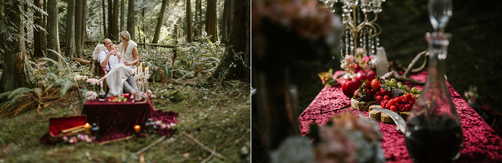 forest engagement-vancouver island-dyptic 4.jpg