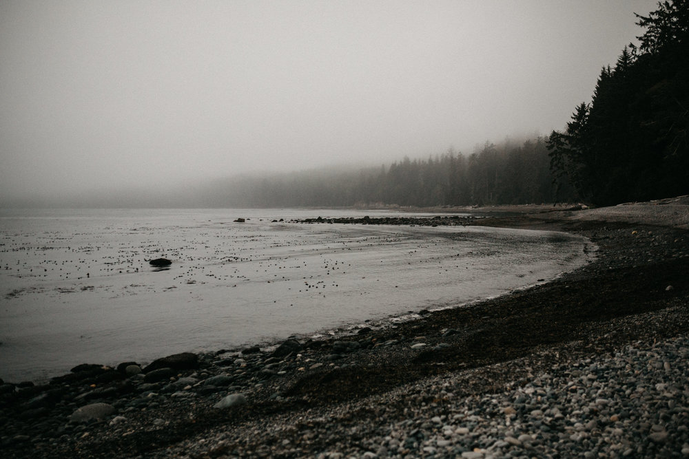 Foggy beach Elopement Sombrio Beach Vancouver Island