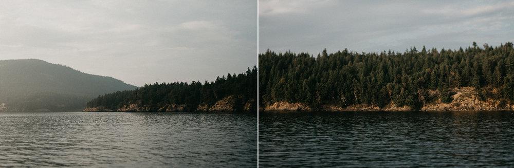 water trees.jpg
