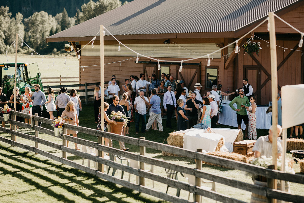 guests at wedding Pemberton Valley BC