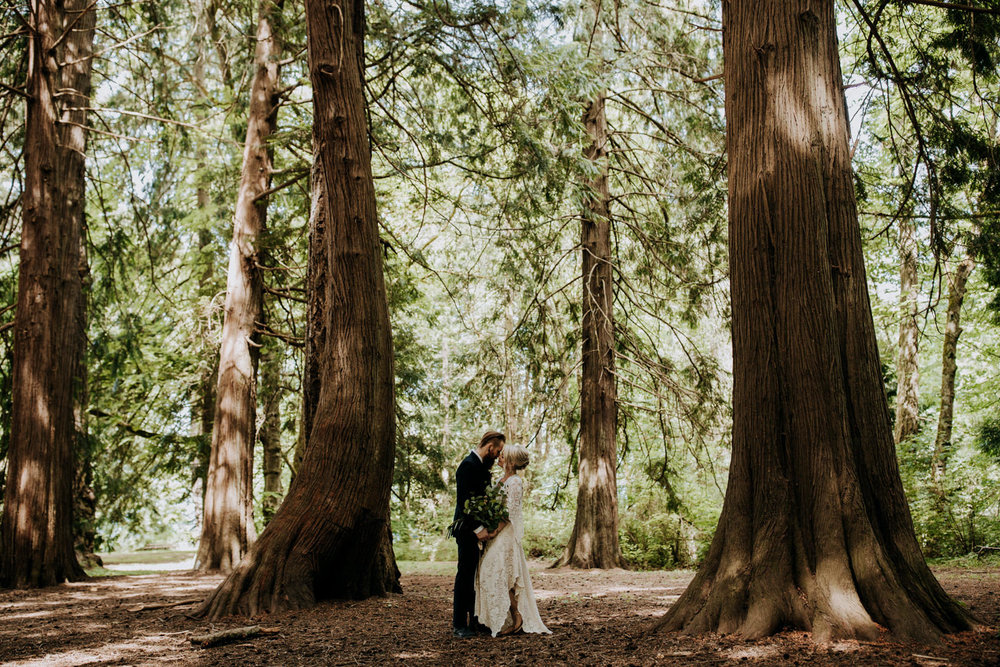 bride and groom pose in ceadar grove victoria wedding photographer