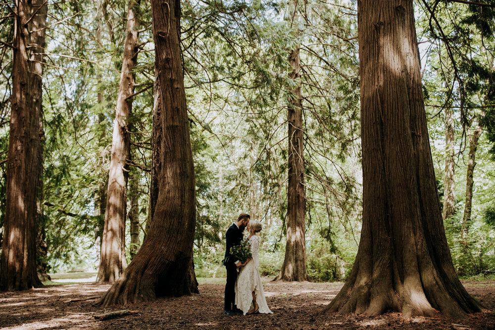 bride and groom pose in ceadar grove victoria wedding photographer