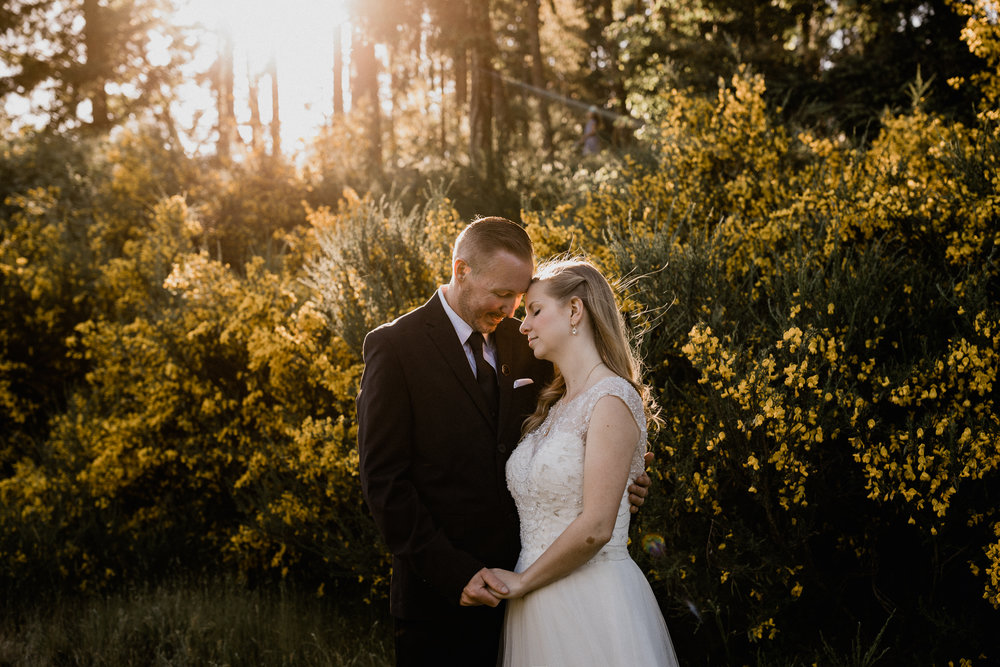 bride and groom embrace in forest vancouver island wedding photographer