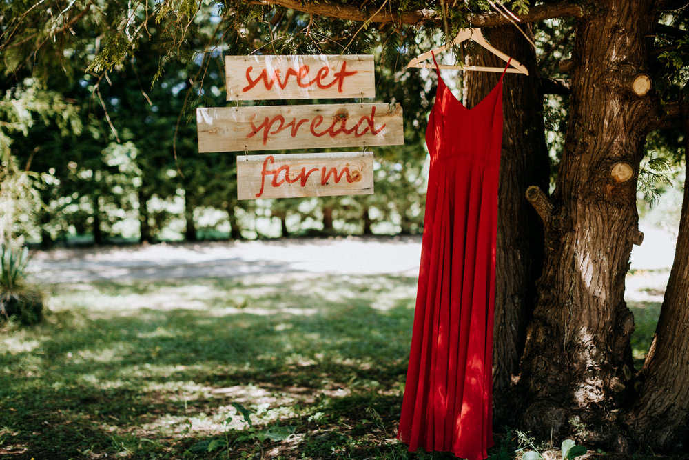 sweet spread farm with red wedding dress Courtenay Wedding Photographer