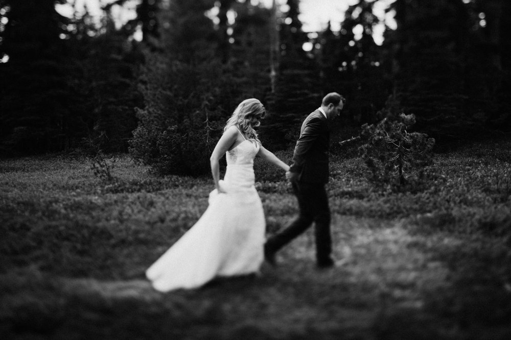 couple in Paradise Meadows, Mount Washington Wedding photographer