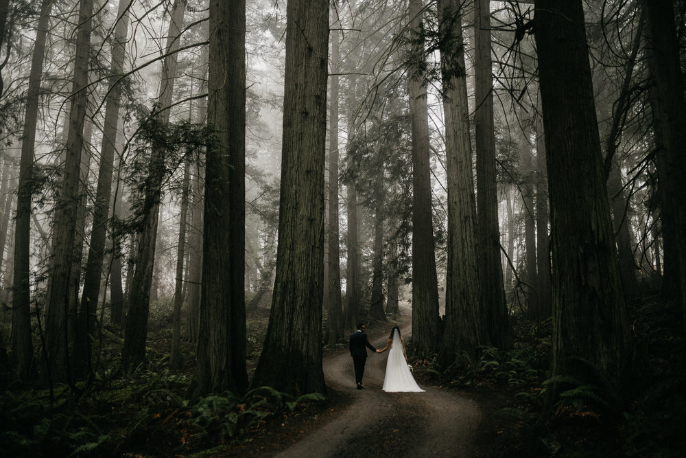 vancouver island wedding elopement photographer-02.jpg