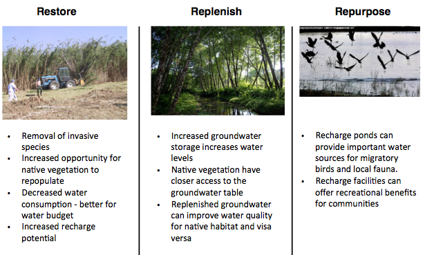 Figure 3. MAR strategies for enhancing natural habitat while achieving groundwater basin water quantity and quality benefits.
