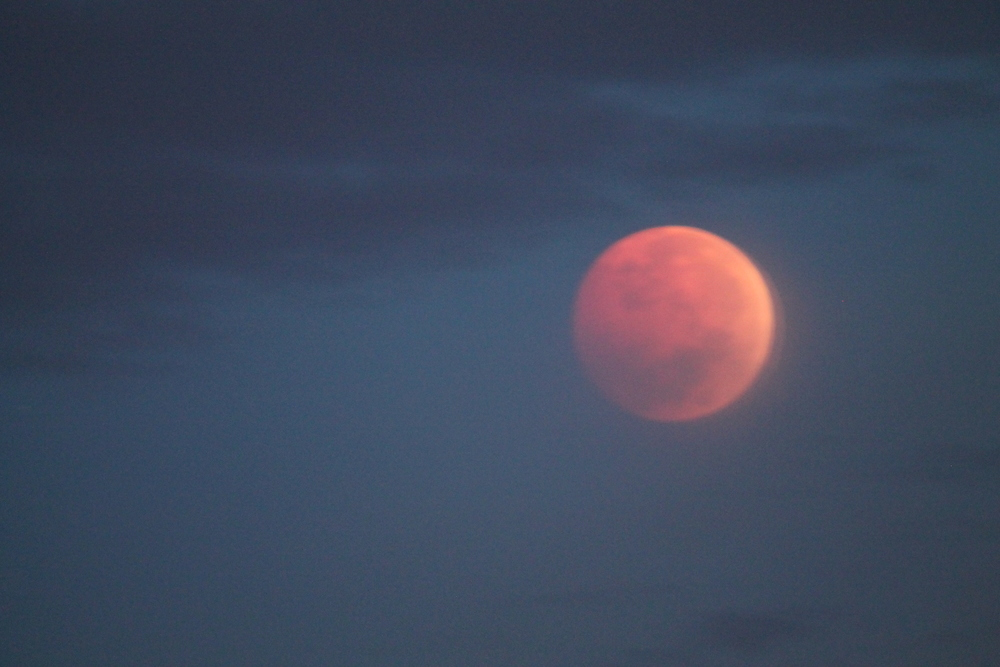 Red Moon Morning
