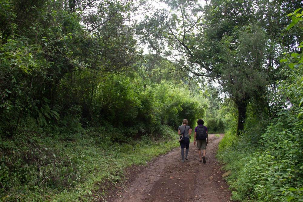 Caminata .jpg