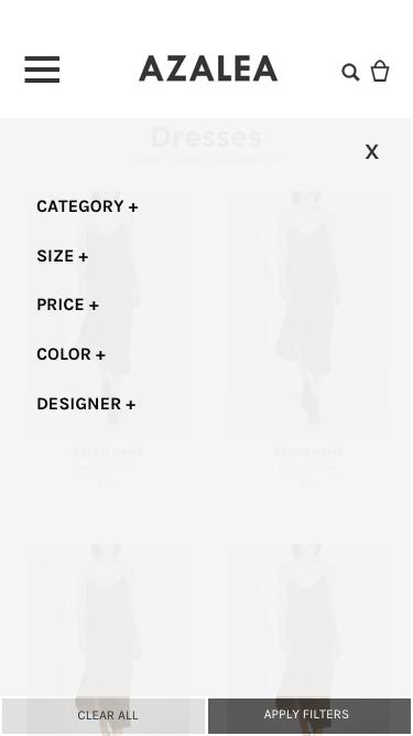 Filter-Main copy.jpg