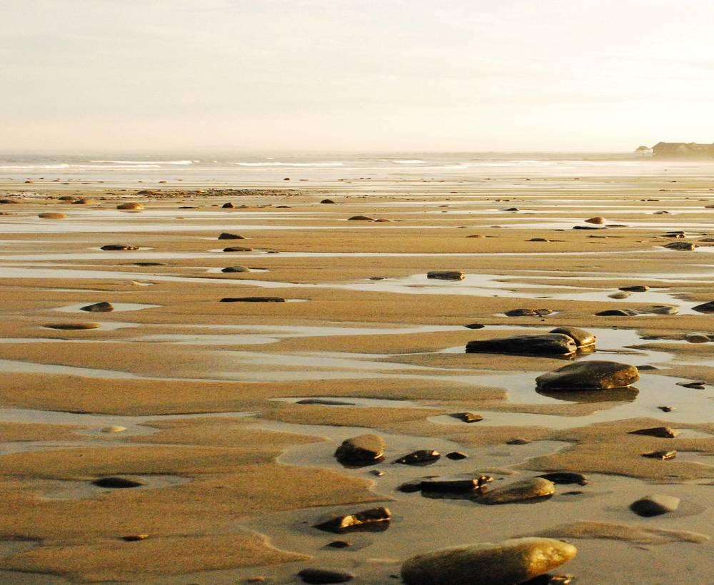 Beach Low Tide.jpg