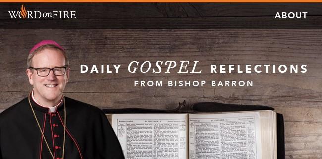 Bishop Barron.jpg