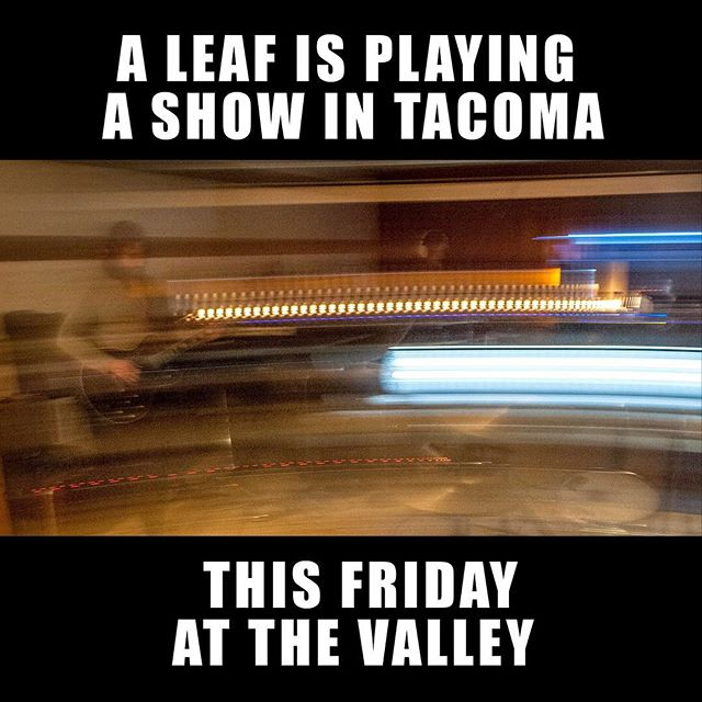 Coming out of retirement and gonna get rowdy this Fri w/ @aleafband at @thevalleytacoma.