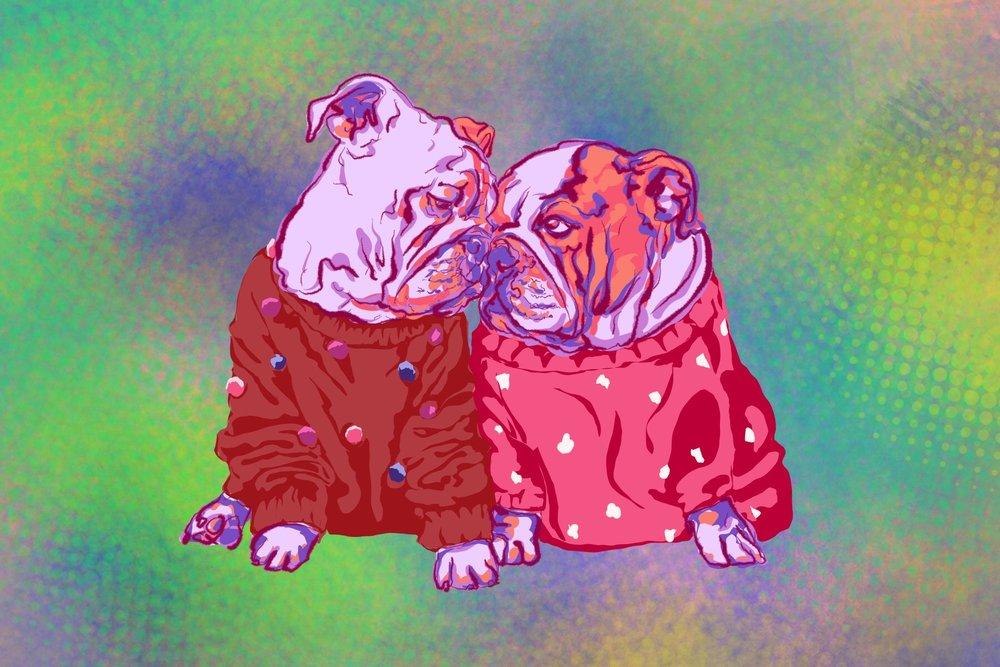Bulldog_pairPsychedelic.jpg