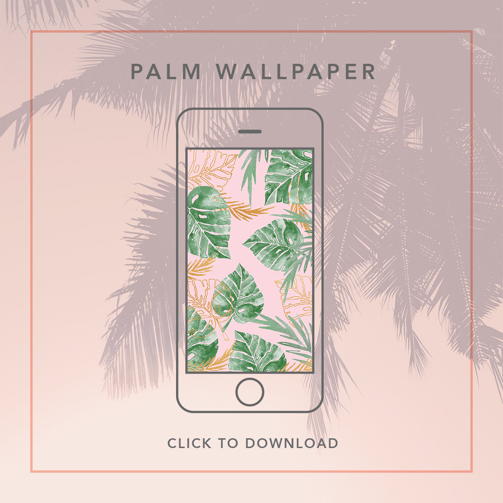 palm-wallpaper