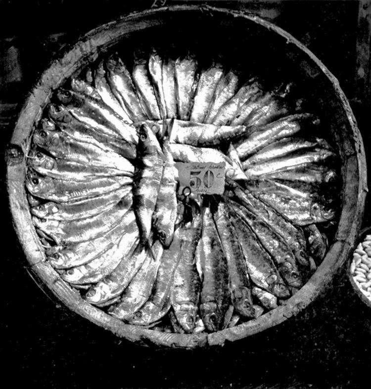 Fish Platter, 1935