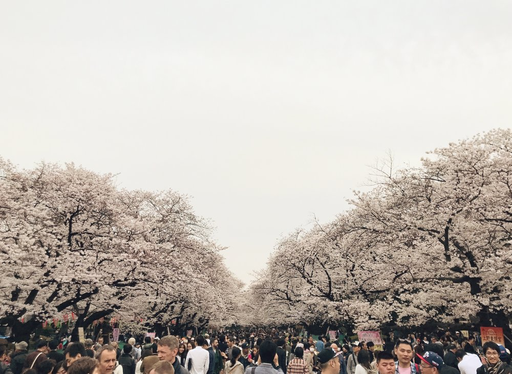 Taito, Tokyo, Japan