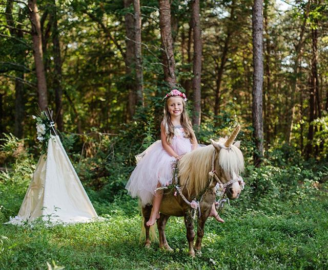 Our first round of Unicorn sessions 🦄 were full of magical moments and I cannot wait for round two!! I am currently taking names for the waitlist, once the date has been decided these people will be contacted before the date is posted! 💌natashalynnphoto@gmail.com for more information! #natashalynnphotography #unicorn #magicalphoto #wilkescountyphotographer #elkinphotographer #childphotography