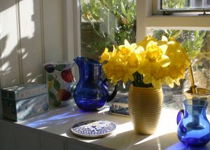 daffodils_windowsill