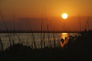 marsh_sunset3