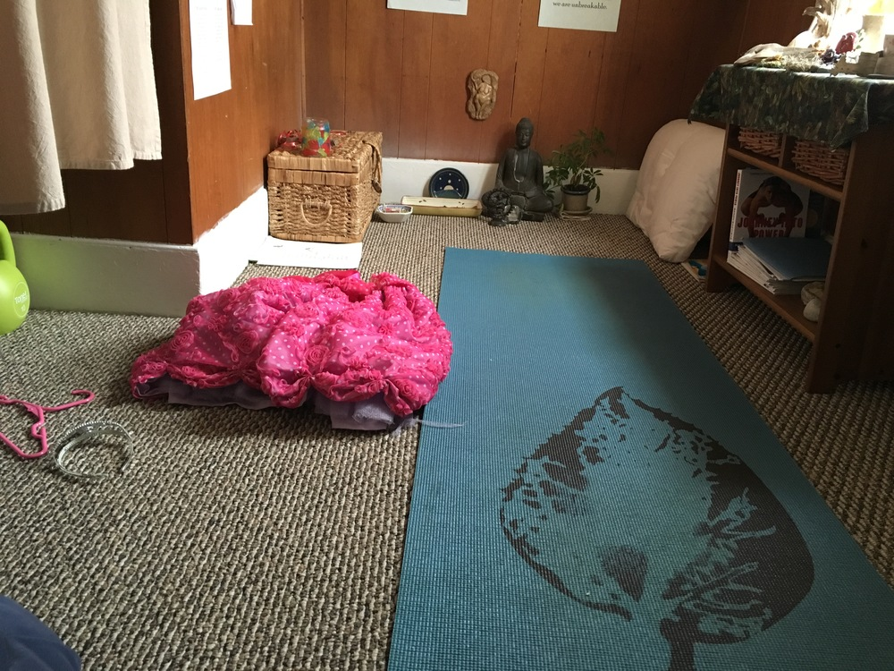 Yoga room. And I didn't even throw that princess dress on the floor for emphasis! It was there when I went to take the photo. Aren't my kids great?