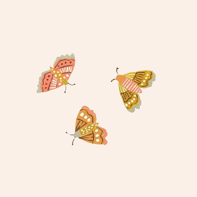 tiny moths