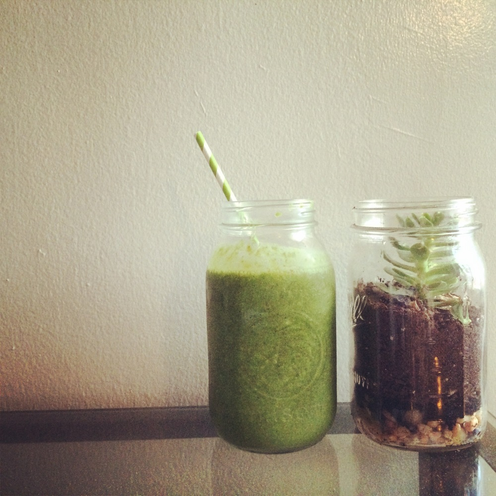 Mmm green smoothies and green succulents