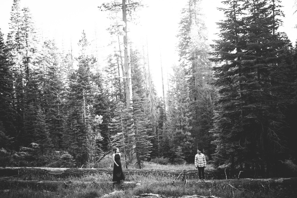 Anna & Vien -- Yosemite National Park Love Story -- Whitney Justesen Photography-115.jpg