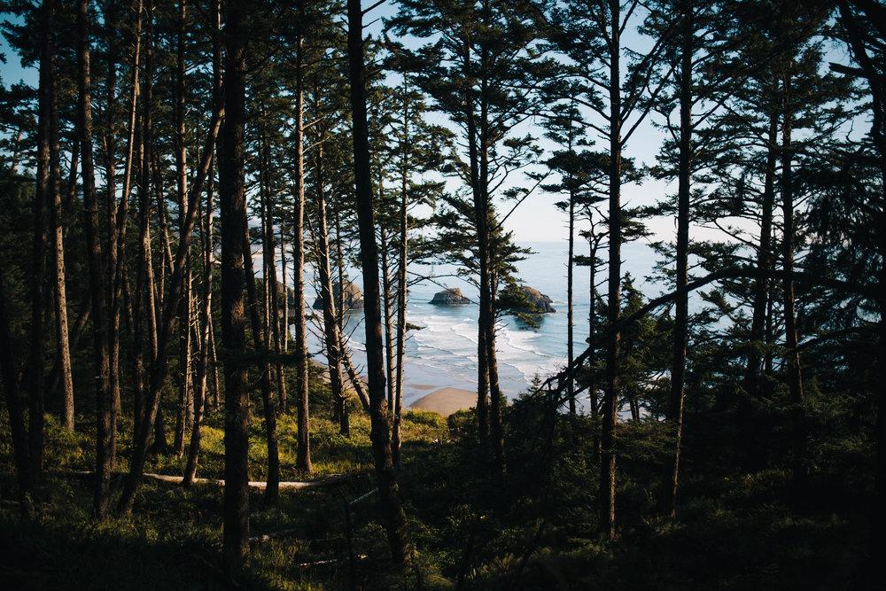 Matt & Beth -- Proposal on the Oregon Coast -- Whitney Justesen Photography-1.jpg
