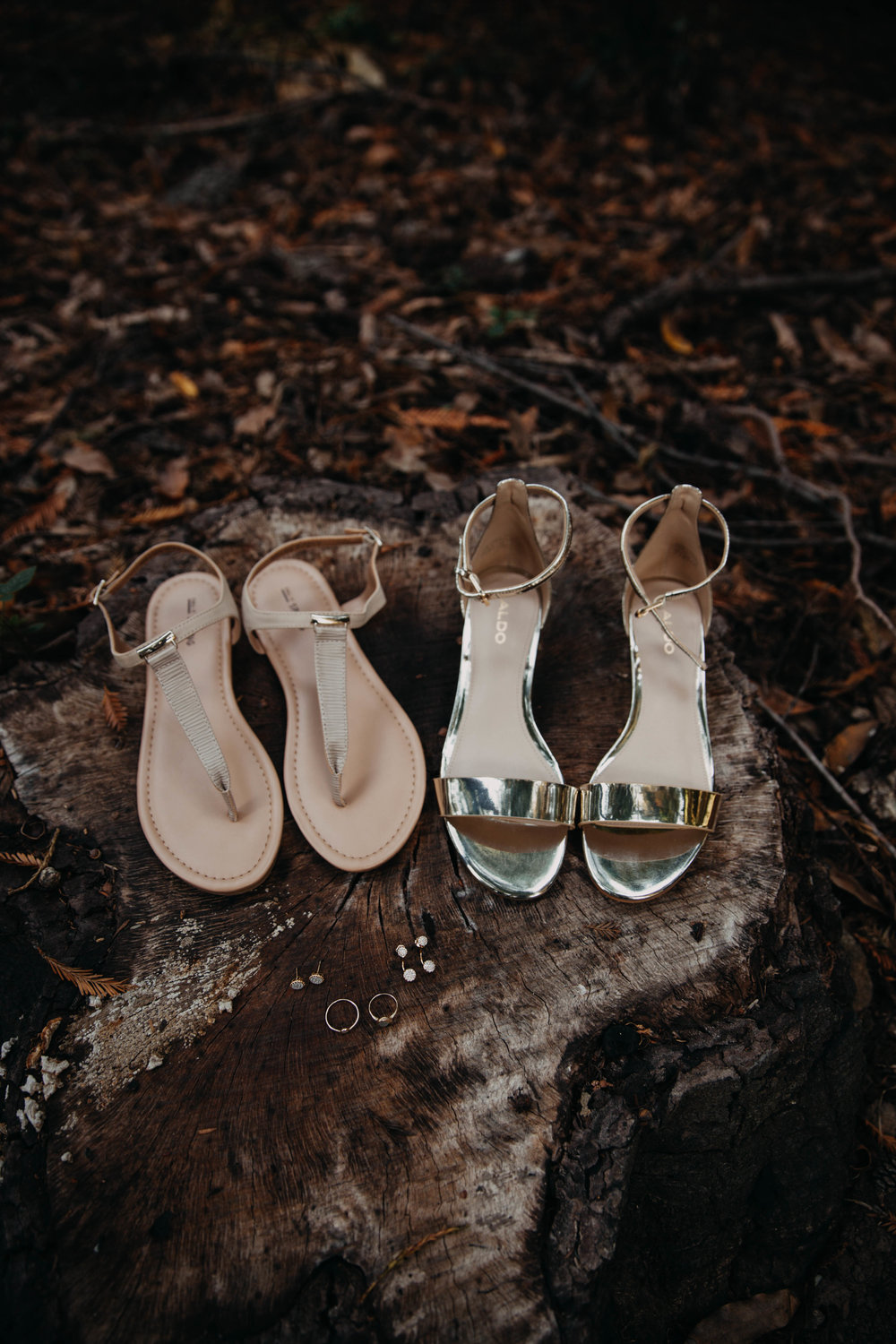 Meaghan + Jen -- An Intimate Big Sur Elopement -- Whitney Justesen Photography-9.jpg